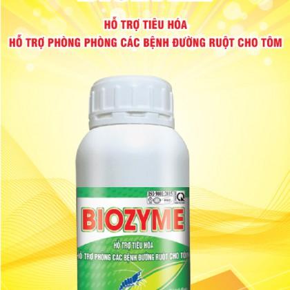 https://thuocthuysannoben.com/san-pham/enzym-tieu-hoa-cao-cap-ho-tro-phong-va-chinh-sua-duong-ruot-phan-trang-trong-duong-ruot